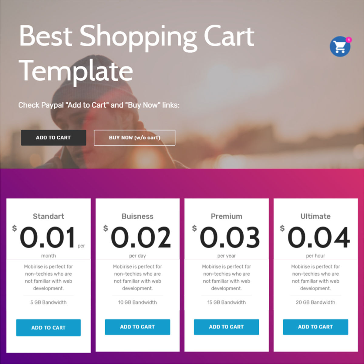 HTML5 Bootstrap  Shopping Cart  Themes