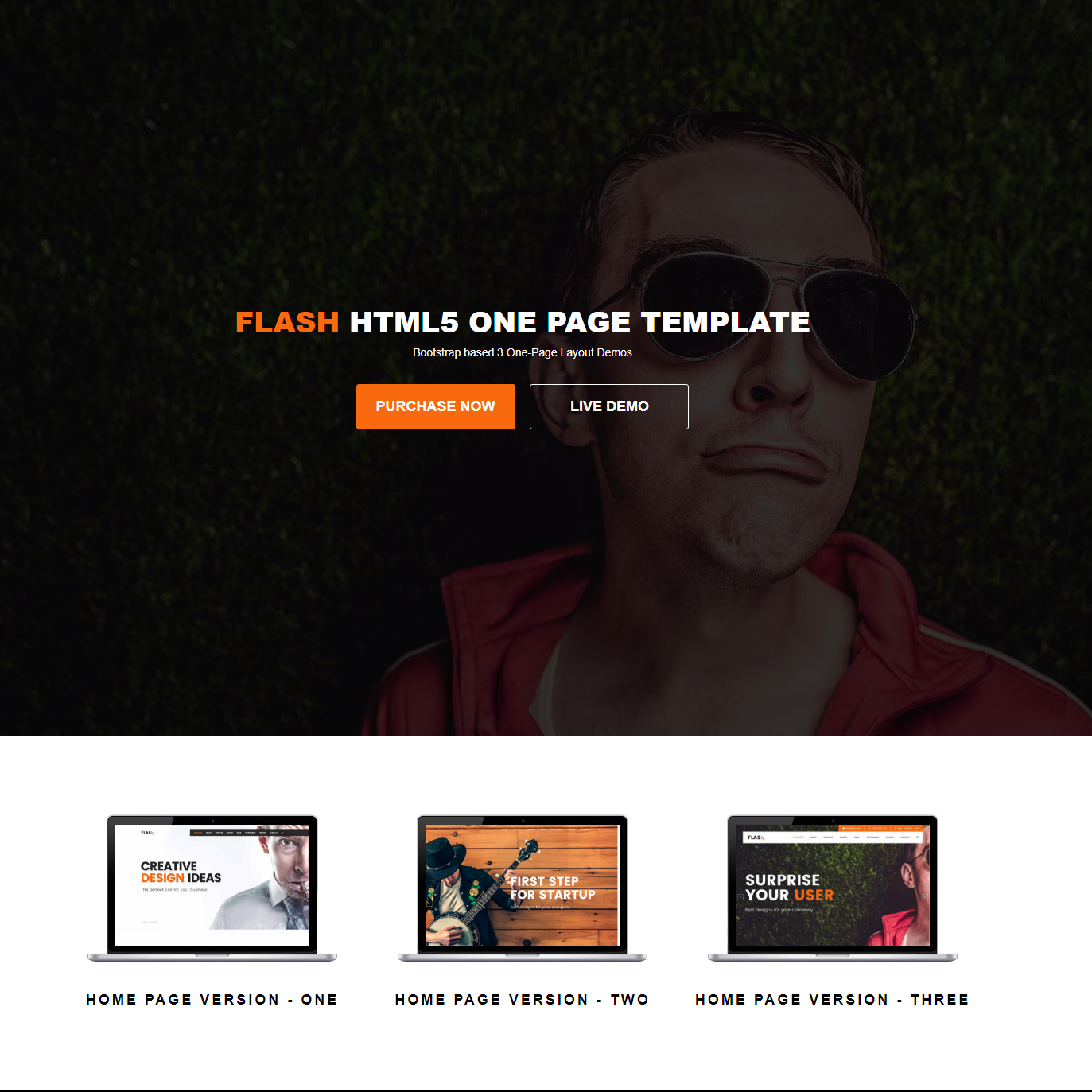 Bootstrap Flash HTML5 Template