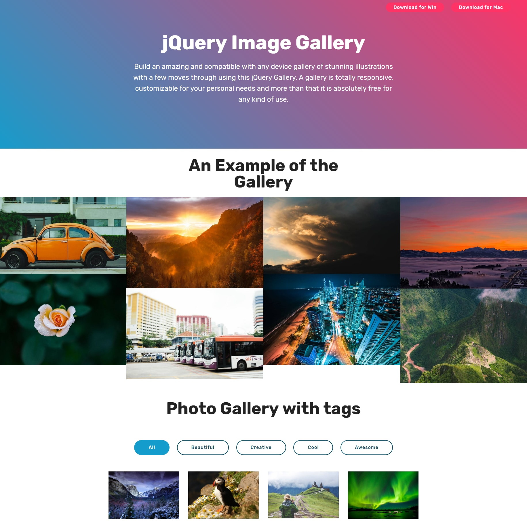 PHOTO GALLERY HTML PDF DOWNLOAD
