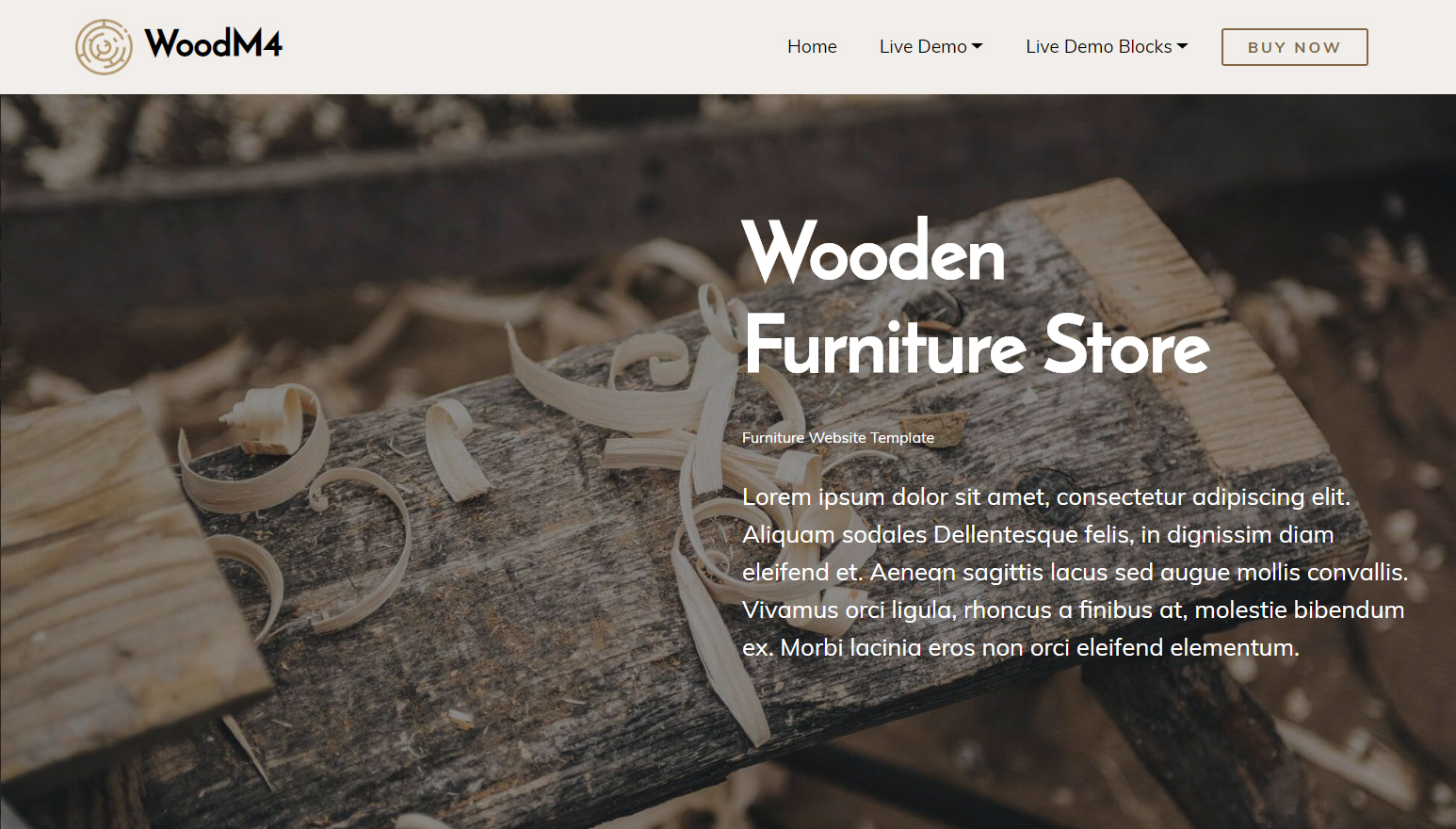 Bootstrap Furniture Website Template