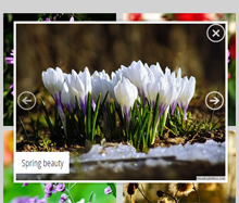 jquery simple slideshow responsive