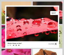 Standard Theme with No Frame thumbnails. Image Gallery With Lightbox.