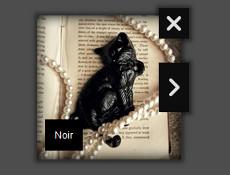 Noir Template
