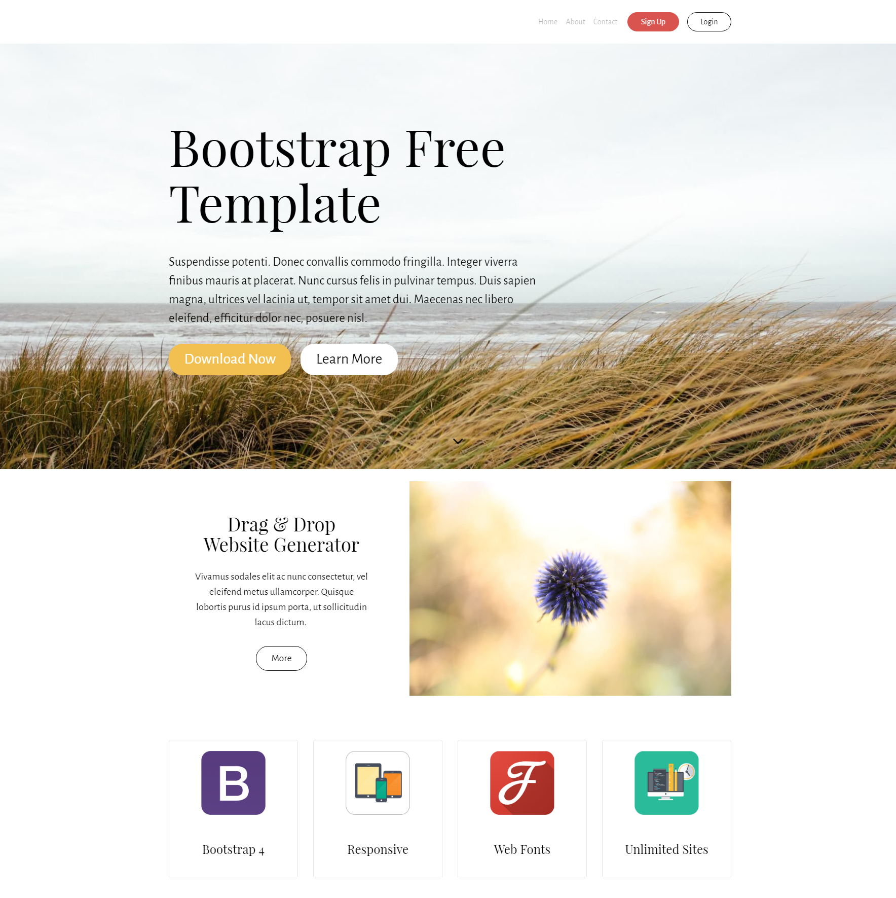 PurityM Bootstrap theme