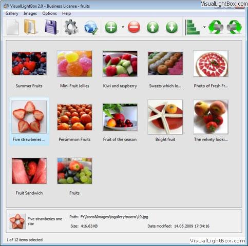 Visual LightBox Free Edition 6.1 full