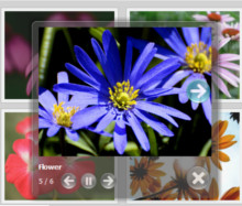 jquery gallery image video